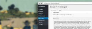 Read more about the article Contact Form 7 To WordPress Post | Pierre Saikali | cf7,contact form 7,database-form,submissions