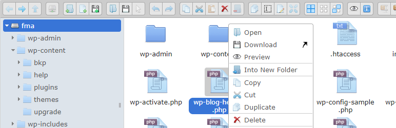 Read more about the article Advanced File Manager | modalweb