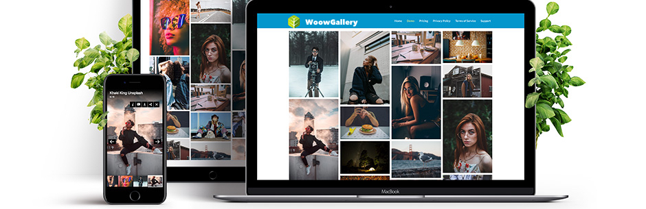 WoowGallery – image gallery / content gallery / ecommerce gallery / social gallery / video gallery / album photo gallery