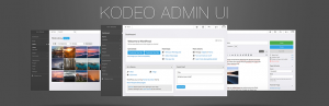 Read more about the article Kodeo Admin UI | Kodeo