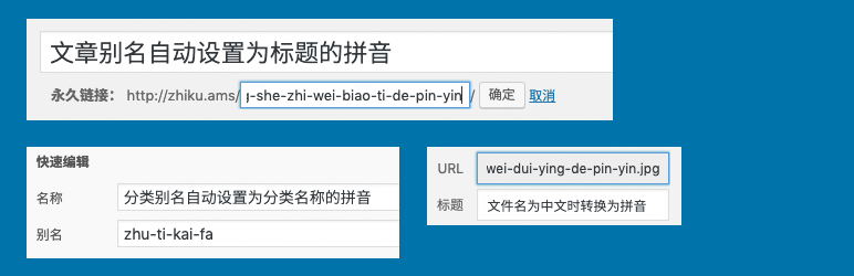 Wenprise Pinyin Slug | WordPress 智库 | pinyin